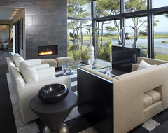 Modern House modern-living-room