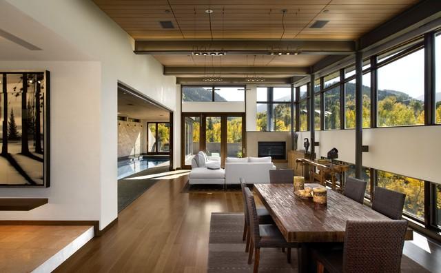 modern living room  rustic  living room  denver