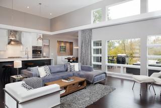 Modern living room in north mankato mn transitional for Outdoor furniture jordan mn