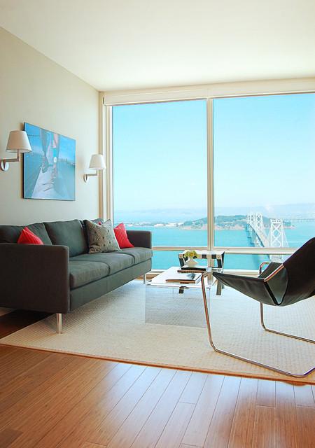 Rincon Hill Condo modern-living-room
