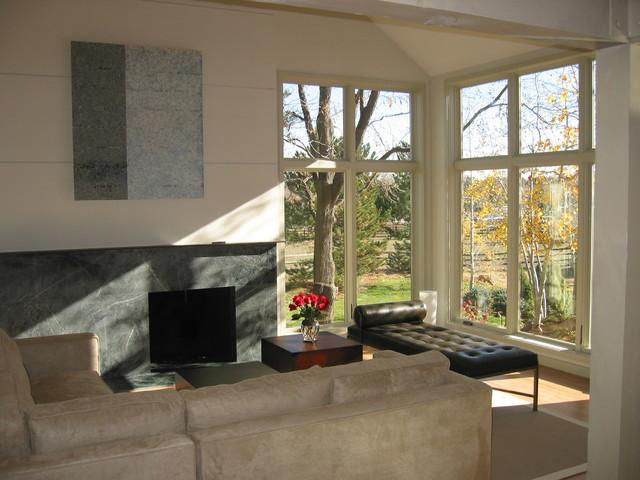 Modern Redo modern-living-room