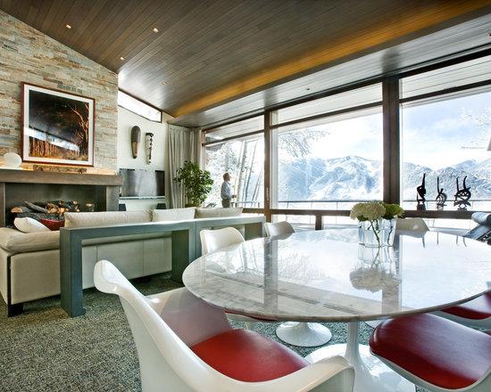 Modern Windows and Doors - Derek Skalko Studios