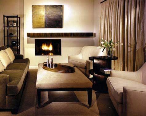 Monochromatic Living Room Transitional