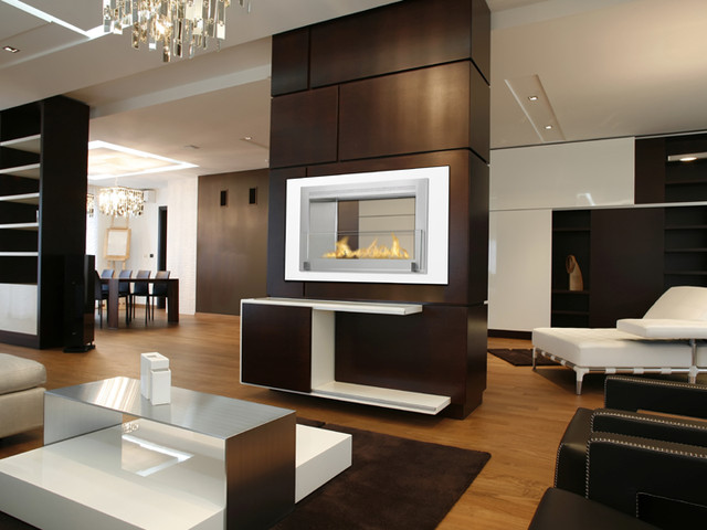 Monte Carlo 2 Sided Ethanol Fireplace By Eco Feu Modern