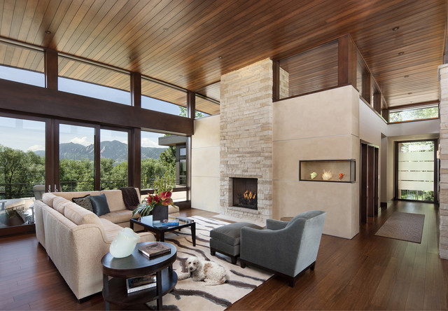 Mountain View Home contemporary-living-room