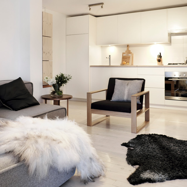 My Houzz: A Minimalist Home That's Anything but Bare modern-living-room