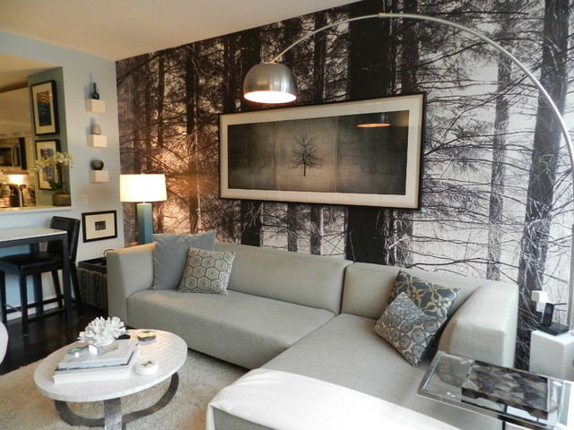 My houzz bachelor 39 s nyc pad contemporary living room for Living room decor ideas houzz