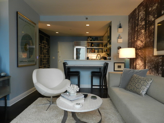 My houzz bachelor 39 s nyc pad contemporary living room for Living room nyc