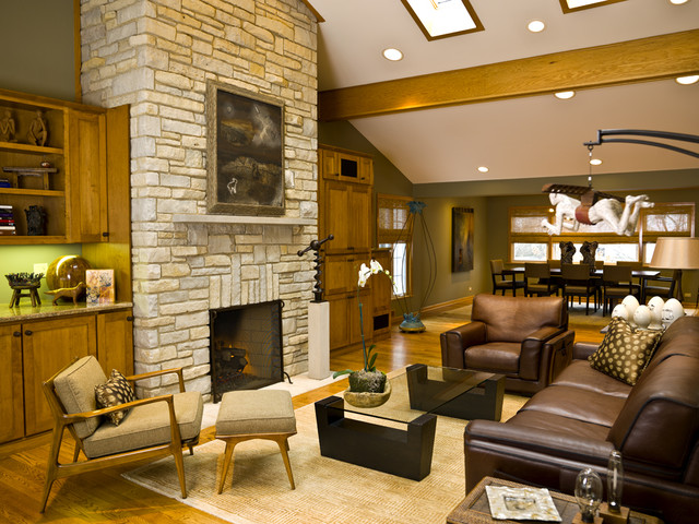 Fifties Remodel contemporary-living-room
