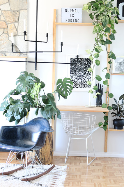 My Houzz nordico-salon