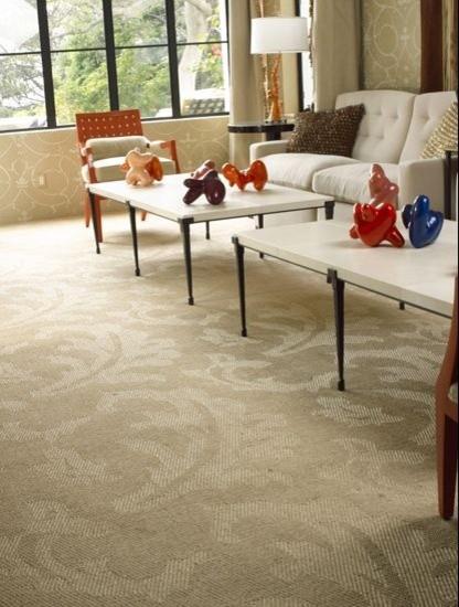 Natural Fiber Rugs & Carpets traditional-living-room