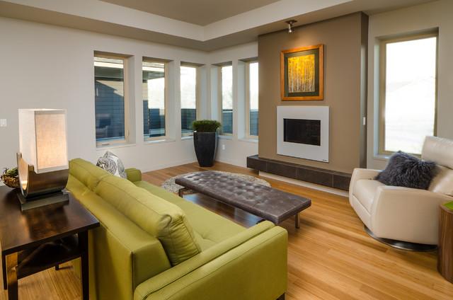 Net Zero Two contemporary-living-room