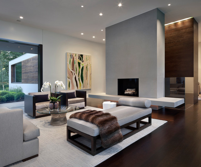 New Canaan Residence Modern Living Room