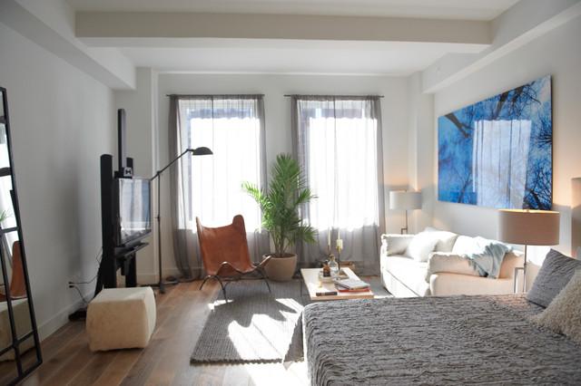 Nyc Studio Apartment Contemporary Living Room New