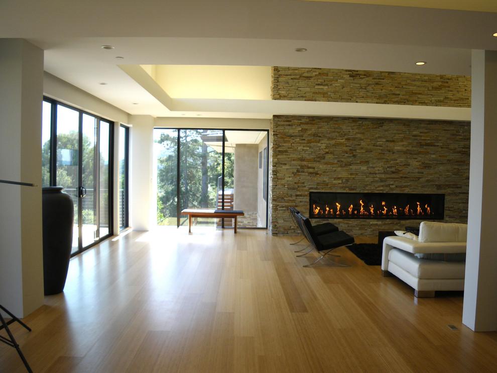 Minimalist bamboo floor living room photo in San Francisco