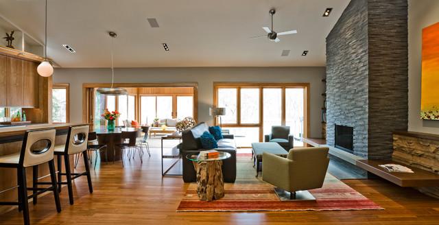 Organic Modern Modern Family Room Minneapolis By