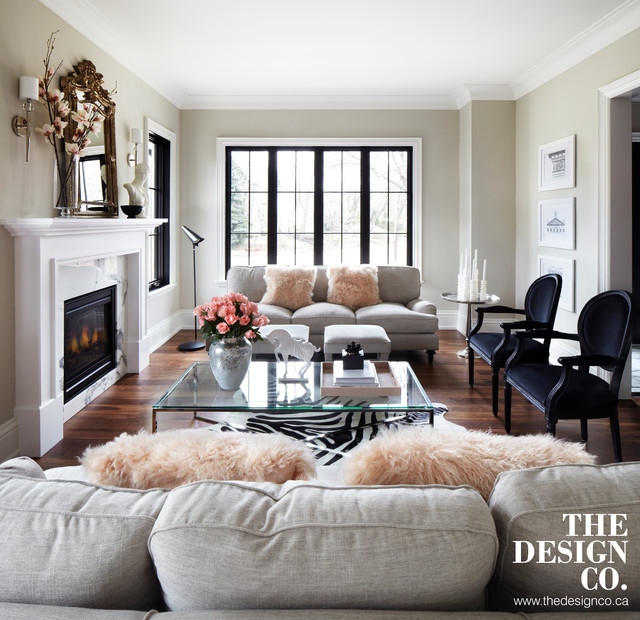 Delightful Parisian Chic Transitional Living Room