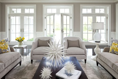 Transitional Living Room By Minneapolis Interior Designers Decorators Martha OHara Interiors