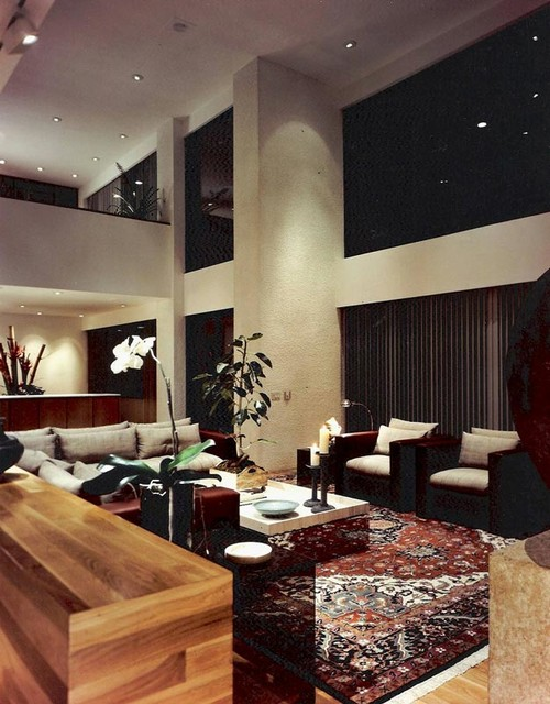 Persian Rug Washing Modern Living Room