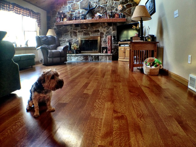 Pet friendly r q white oak floor traditional living for Hardwood floors and dogs