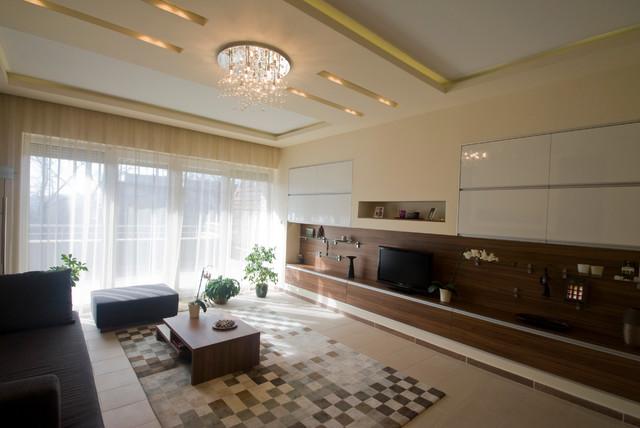 Private home contemporary-living-room