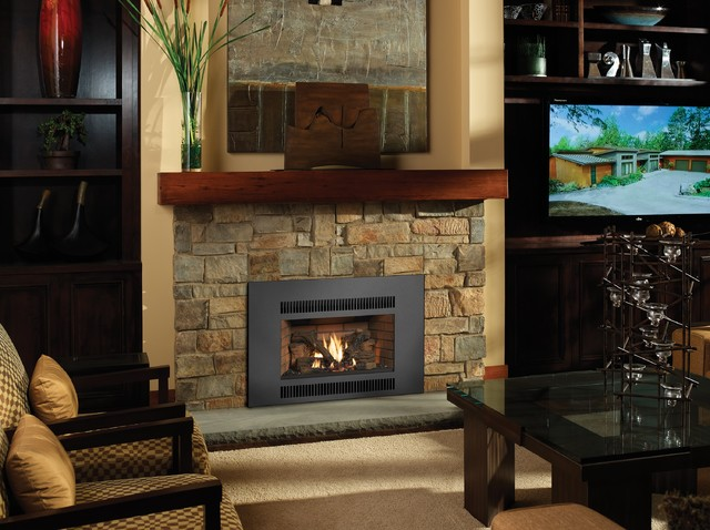 Radiant Plus Large Gas Insert Transitional Indoor Fireplaces Seattle