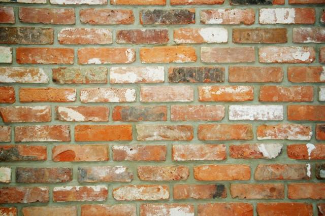 Reclaimed Thin Brick Veneer Traditional Living Room