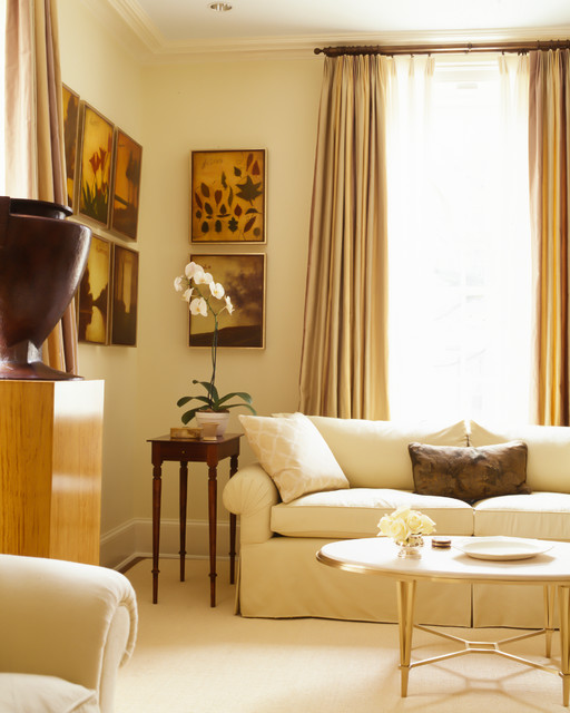 Residence Old Town Alexandria Virginia Traditional Living Room Dc Metro By David
