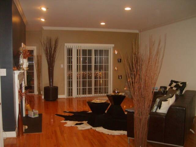 Residential Custom Painting Projects