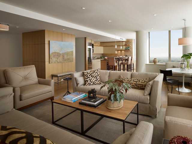 Rittenhouse Square Penthouse contemporary-living-room