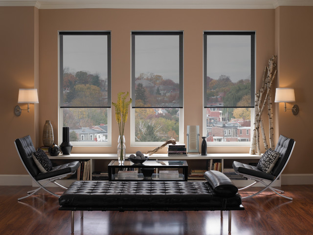 Roller Blinds Modern Living Room Denver By Dsc