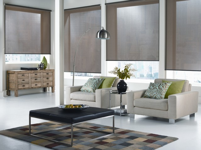 Superbe Window Treatments. Roller Shades New York City Modern Living Room