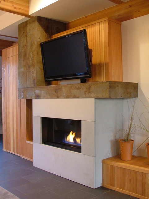 Roosevelt Residence - Modern Fireplace with Concrete, Steel and Fir Surround modern living room