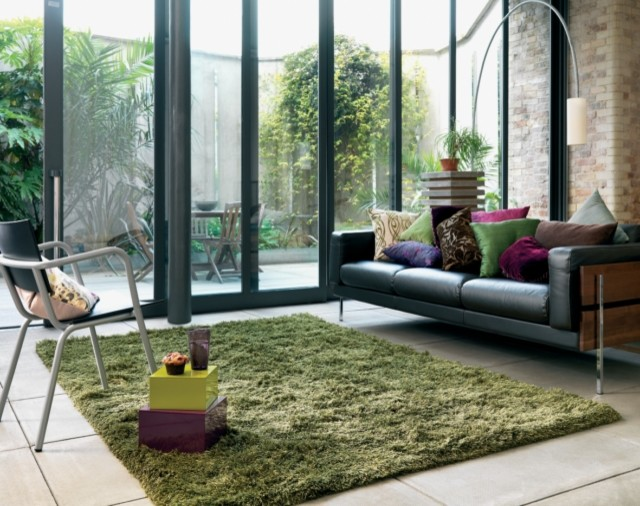 Rugs - Contemporary - Living Room - Birmingham