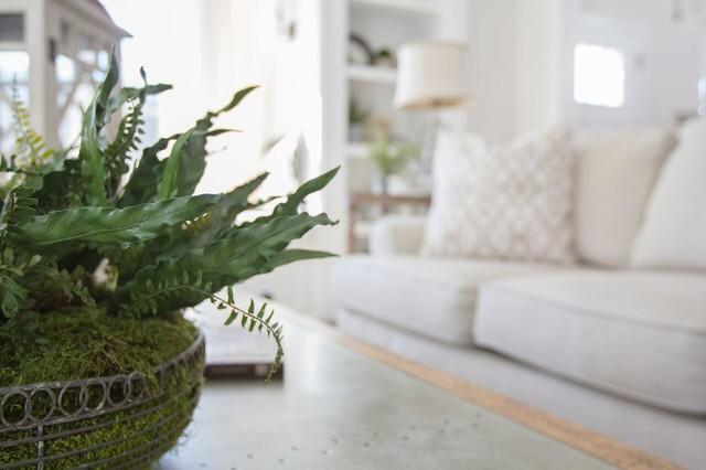 Rustic Elegance rustic-living-room