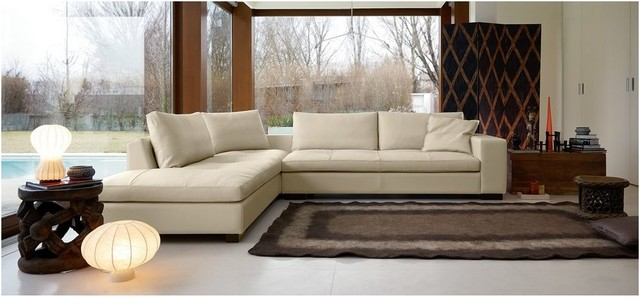 Captivating Saint Tropez Sectional Sofa Contemporary Living Room