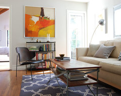 San Francisco Charmer contemporary living room