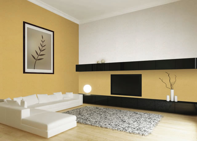 satori japanese wall finishes contemporary living room