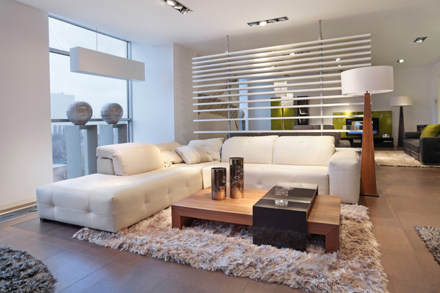 Scandinavian Contemporary Style - Living Room - Phoenix - by Thingz ...