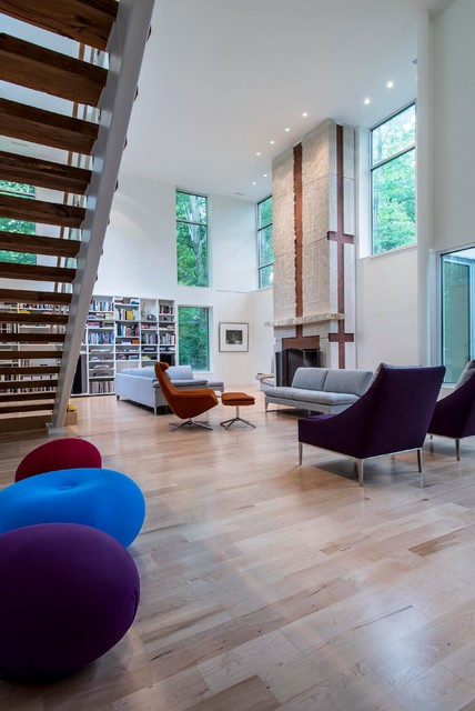 Scenic Modern Living Room Indianapolis By David Rausch Studio