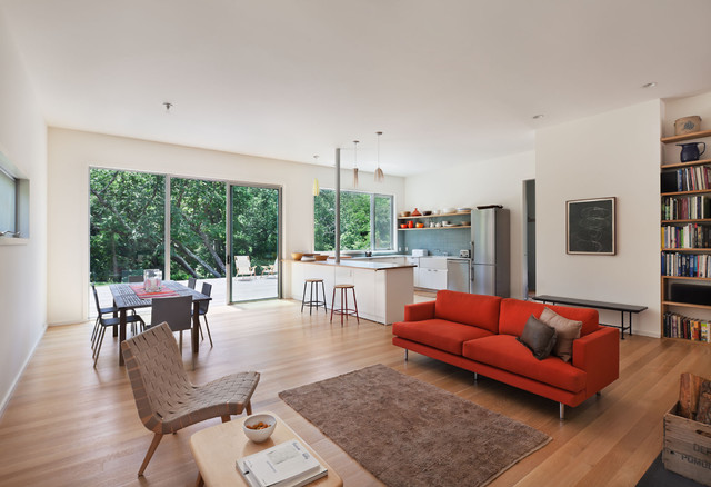 Sheared Saltbox contemporary-living-room