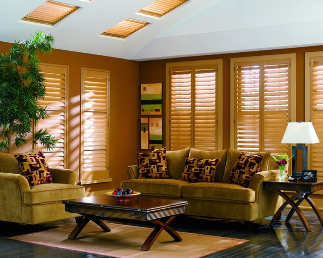 Shutters Contemporary Living Room Other By Blinds