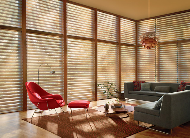 Silhouette Window Shadings Midcentury Living Room