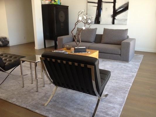 Silk Bamboo Rug In Modern Living Room Contemporary Living Room