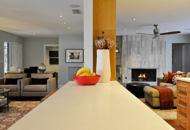 Silverridge modern-living-room