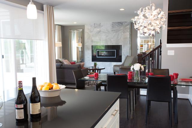 Sleek contemporary decor in ashburn contemporary for Modern sleek living room