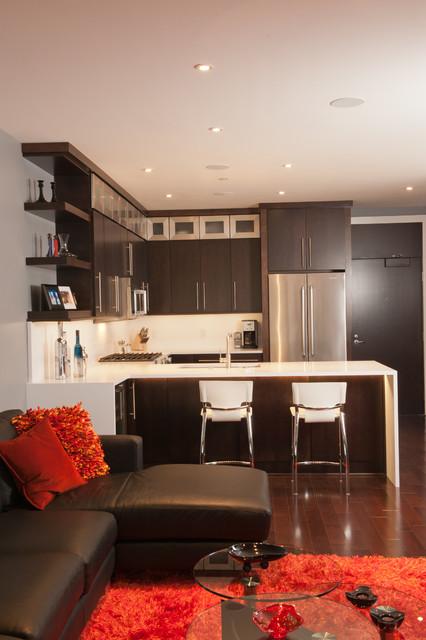 Sleek Urban Remodel. Pittsburgh contemporary-living-room
