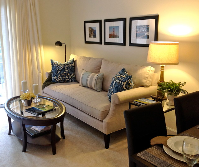 Small apartment living contemporary living room for Houzz small living rooms