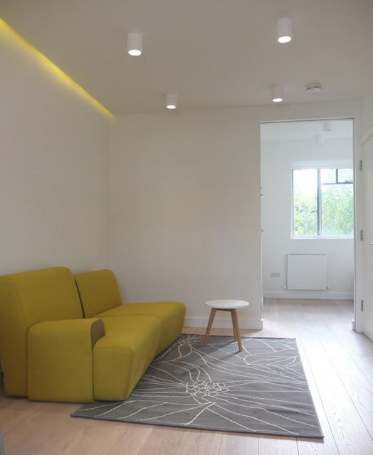 Soho Microflats Contemporary Living Room London By HeathWalker Studio