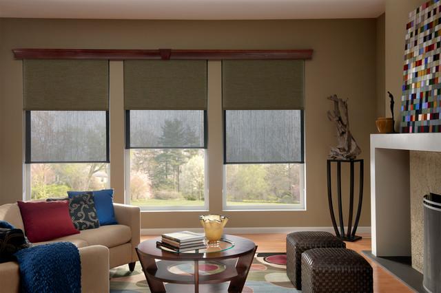 Sensational Solar Roller Dual Shades Contemporary Living Room Interior Design Ideas Gentotryabchikinfo